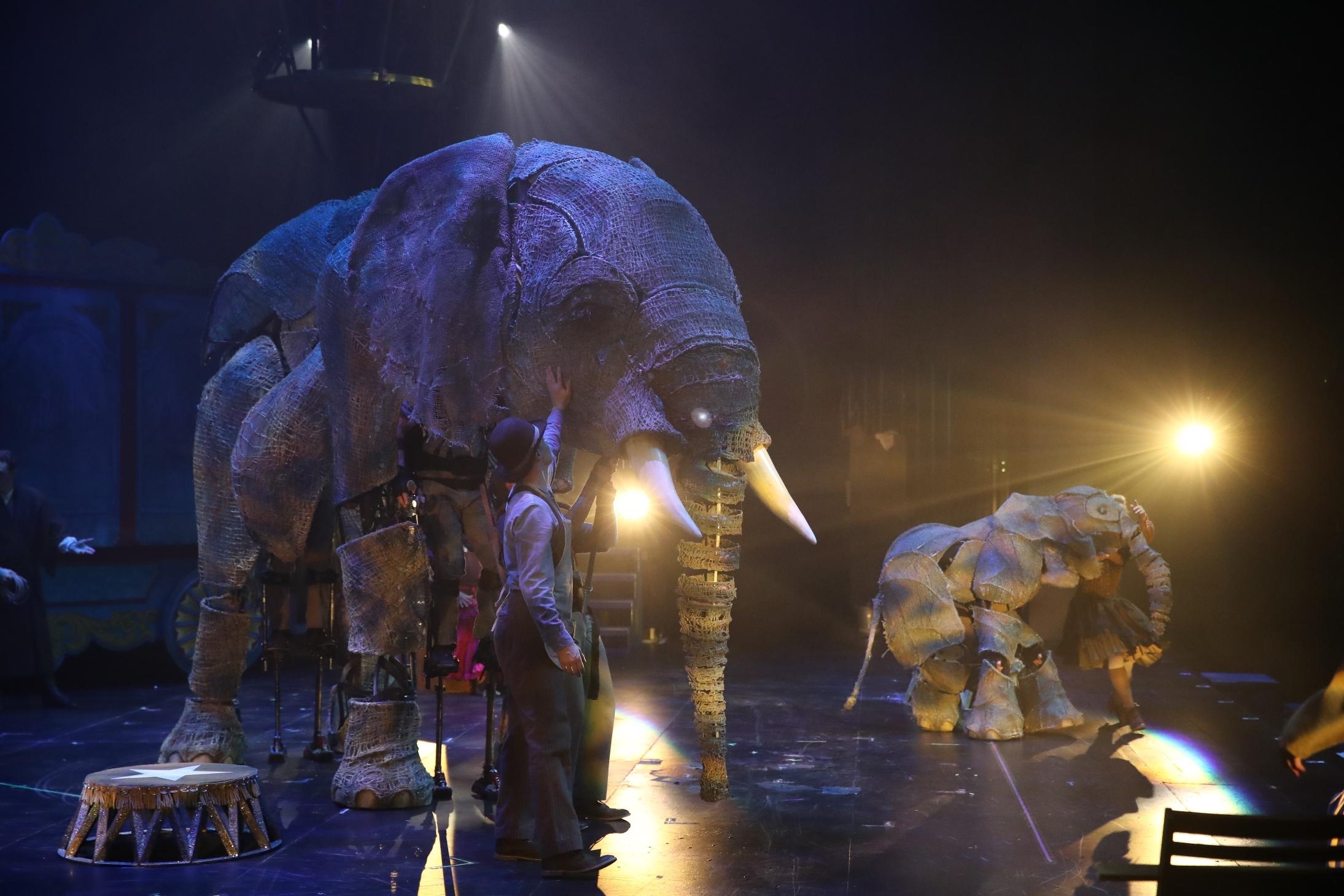 Circus 1903, Royal Festival Hall, 2018