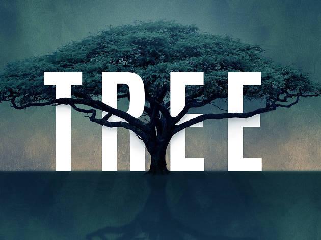 Tree, Young Vic, Idris Elba