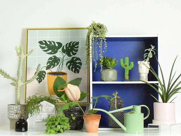 The best shops for flowers, indoor plants and gardening supplies