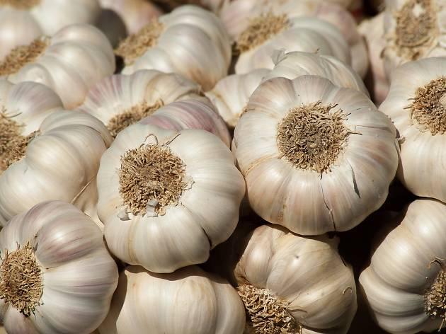 Generic garlic