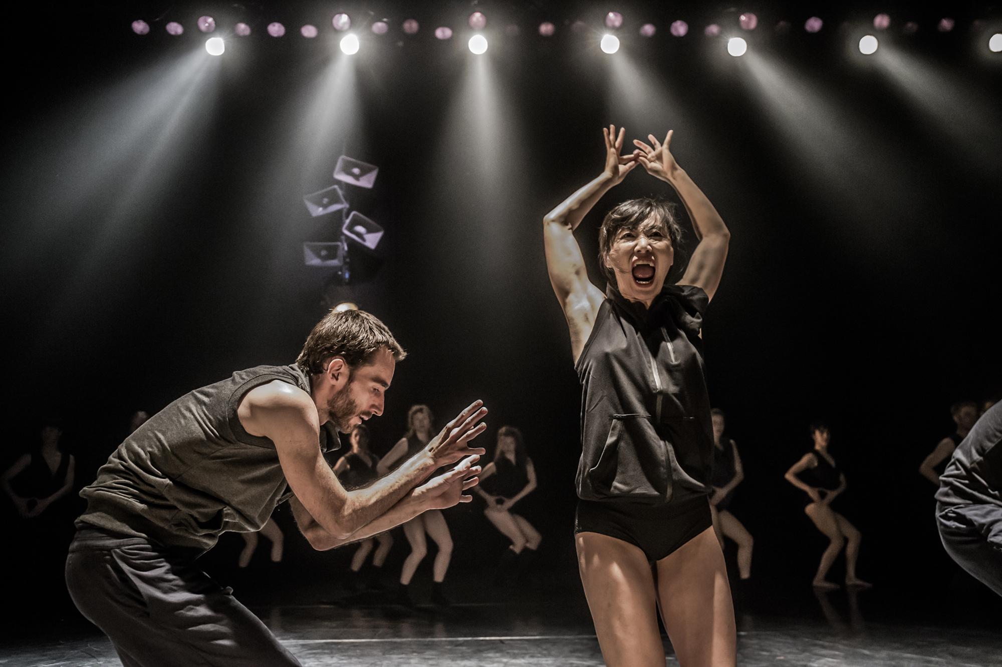 Kibbutz Contemporary Dance Company due to perform Asylum