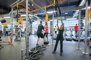 Gym, fitness, affordable gyms