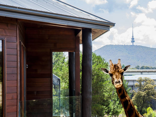 The best hotels in Canberra