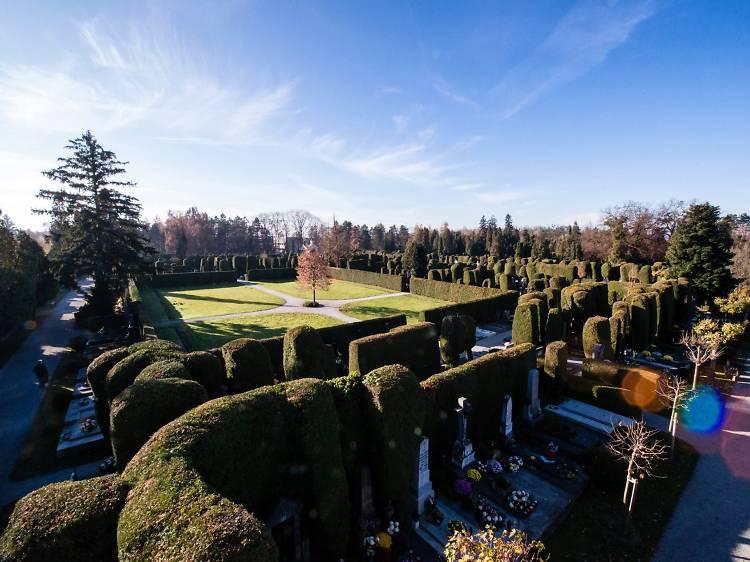Wander in Varaždin's loveliest garden