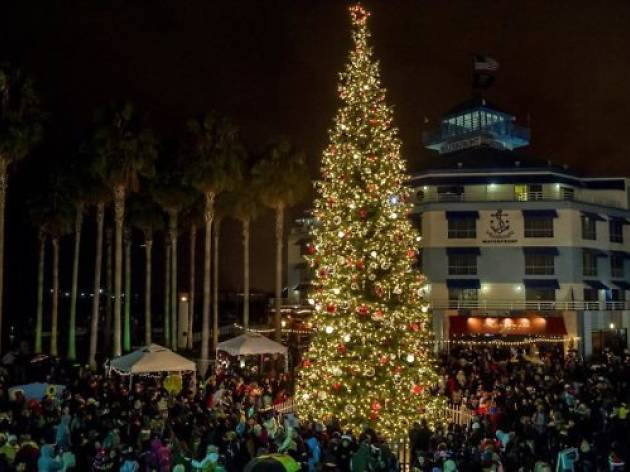 Where to see Christmas lights in the Bay Area