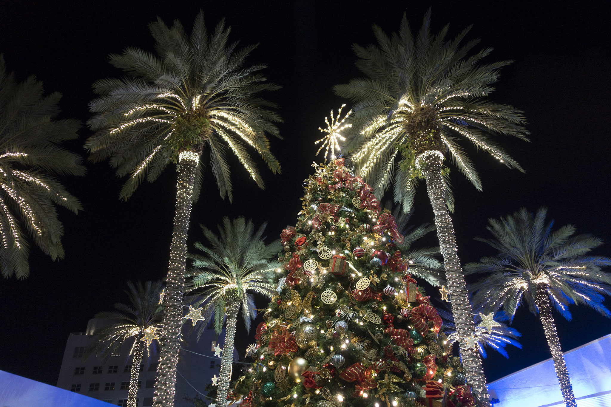 The best Christmas events in Miami