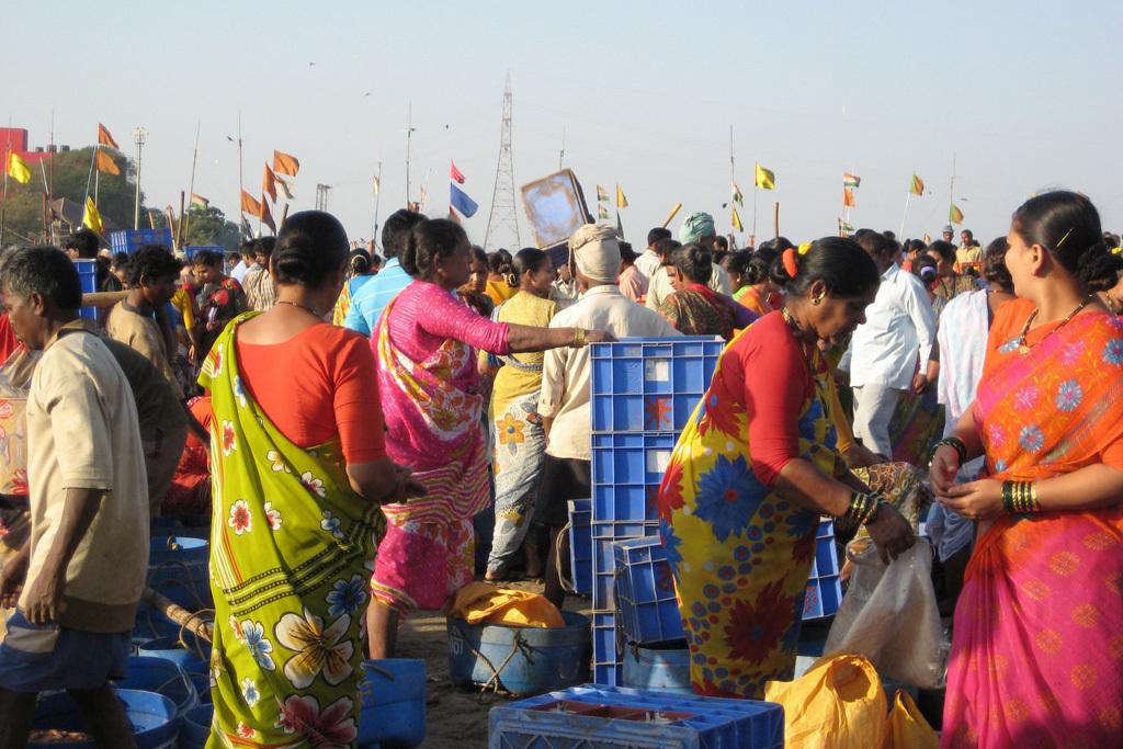 Koli Seafood Festival