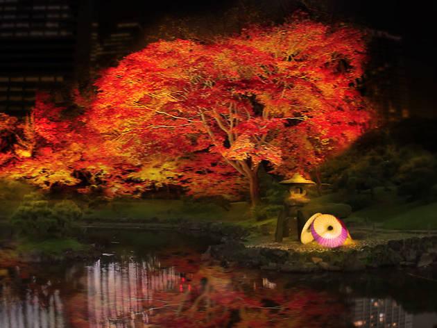 芝離宮夜会 by 1→10 Lights interact with nature