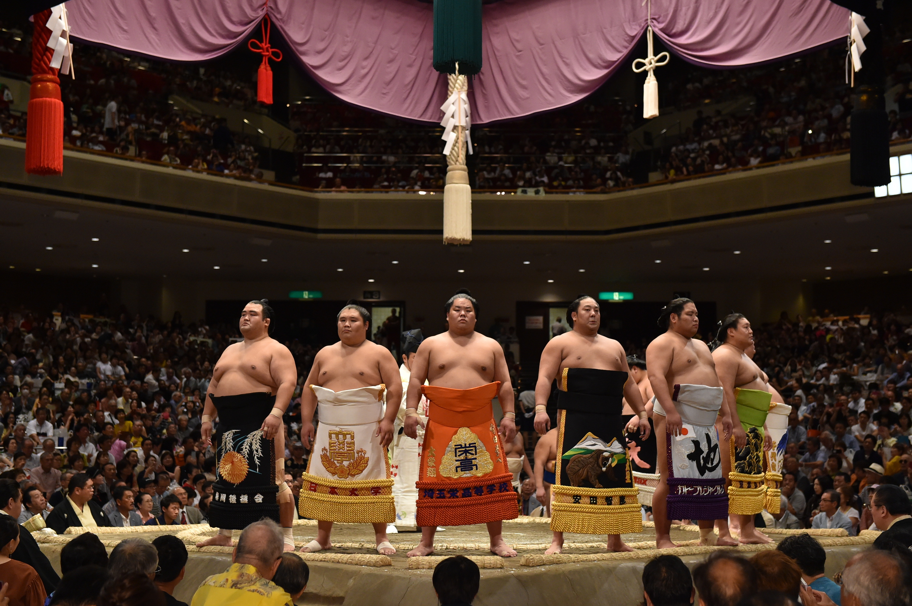 Watch sumo tournament in Ryogoku