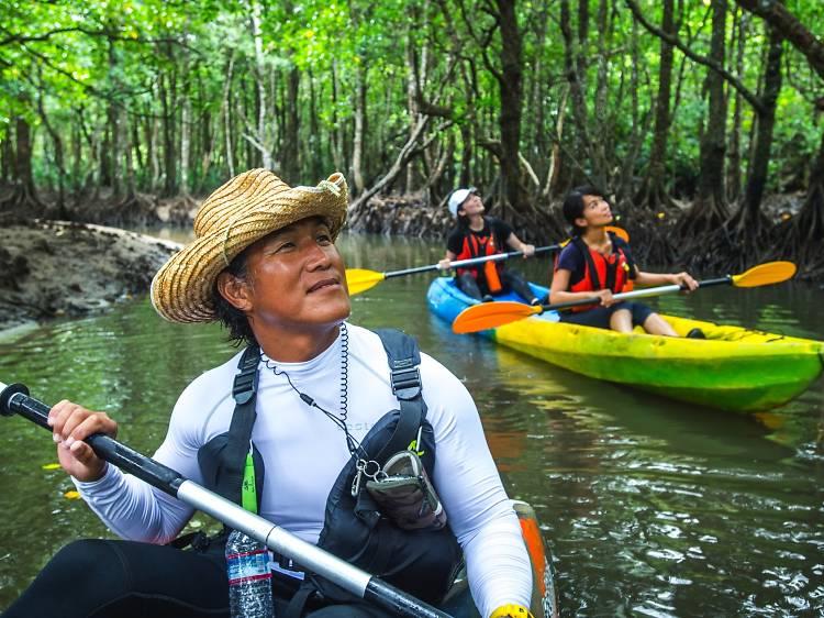 Go kayaking through dense jungle