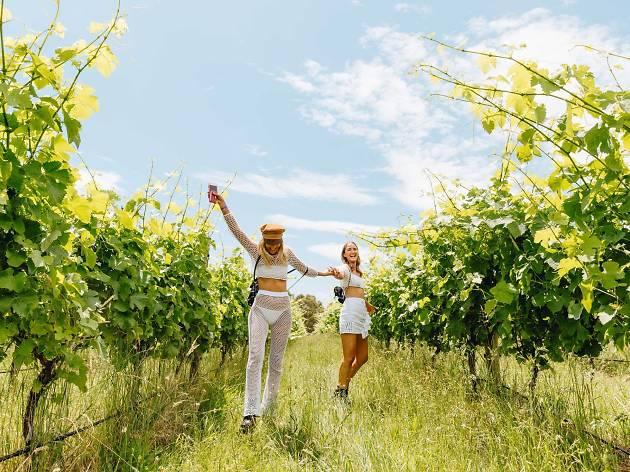 Woman running through vineyards.