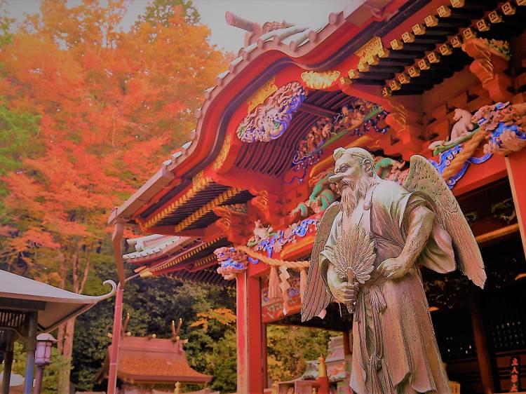 Hike Mount Takao in every season