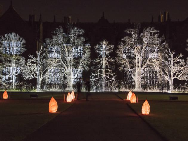 Glow Wild at Wakehurst