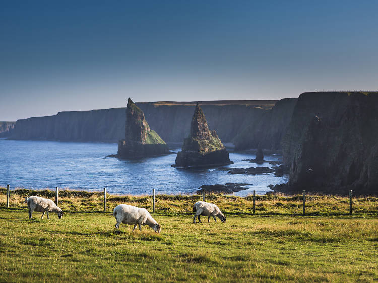 The best places to visit in the UK in 2019