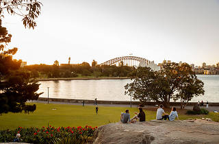 People sitting in the Botanic Gardens Sydney at sunset