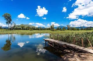 Nam Sang Wai Wetlands