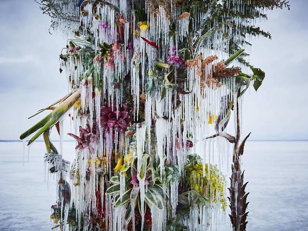 Japanese artist AMKK is flowerbombing Siwilai City Club this Dec