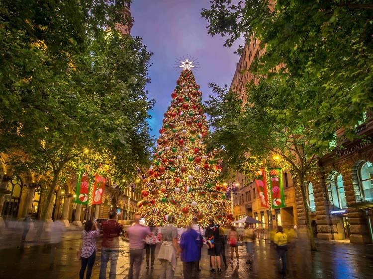 Martin Place Christmas Tree