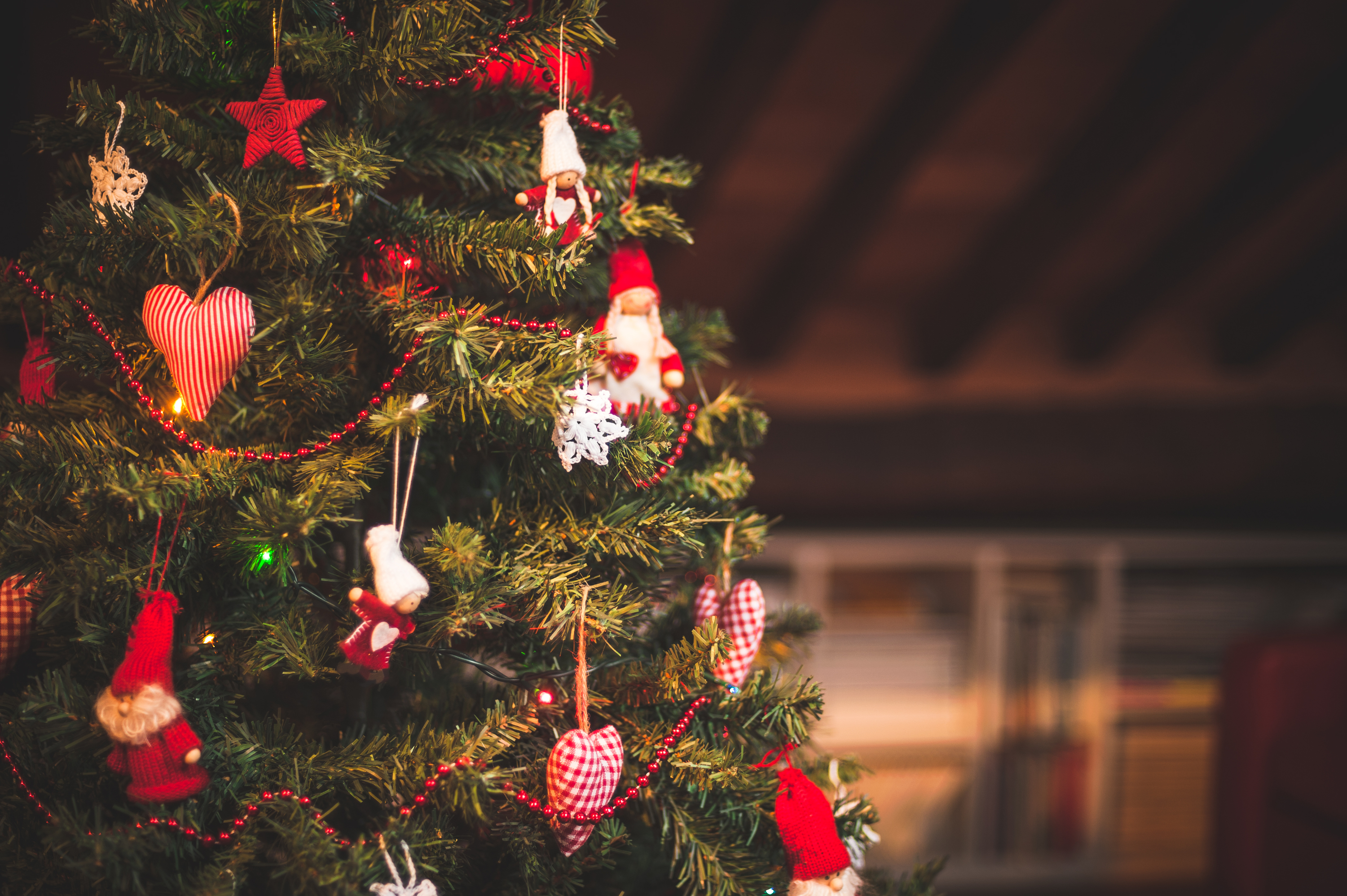 The best places to buy your Christmas tree in Hong Kong