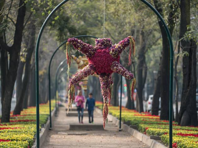 Exposición Piñatas y flores (Foto: Cortesía Festival Flores y Jardines)