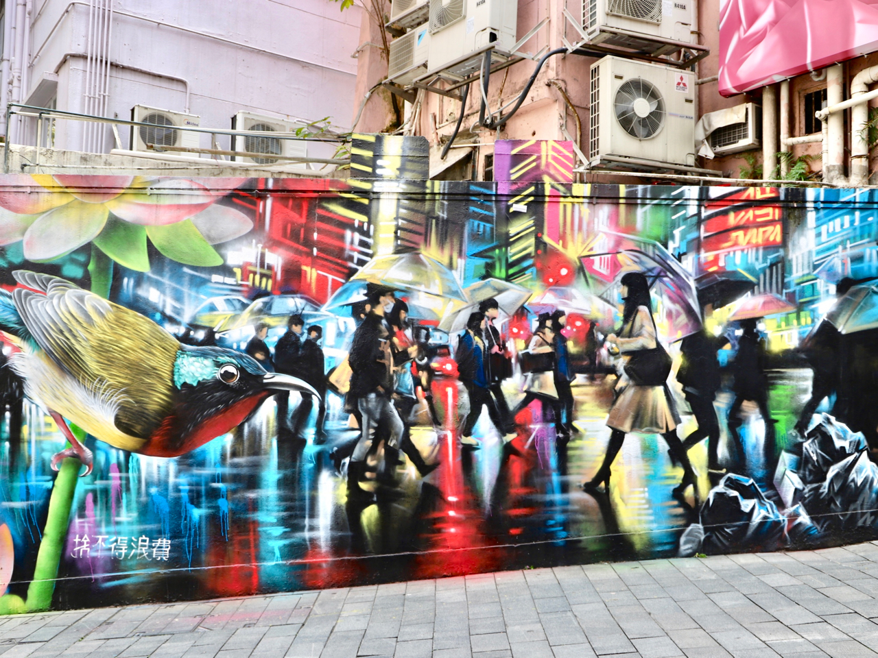Dan Kitchener on Elgin Street