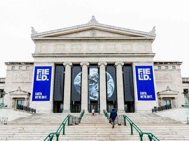 Free museum days at the best Chicago museums