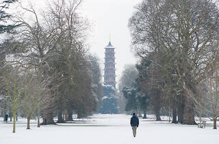 Kew Gardens in the snow