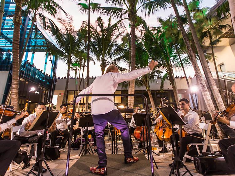 Miami Design District Performance Series