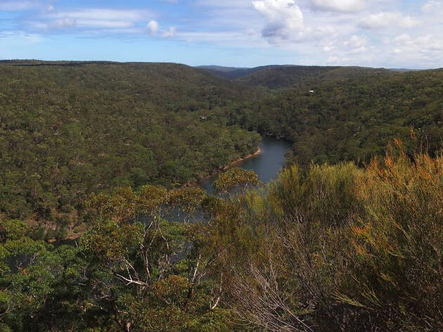 View of Bungoona lookout; river; trees