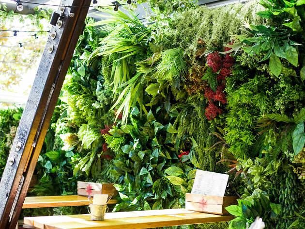Beer DeLuxe greenery