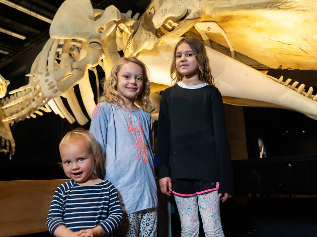 Kids in Whales | Tohorā exhibition.