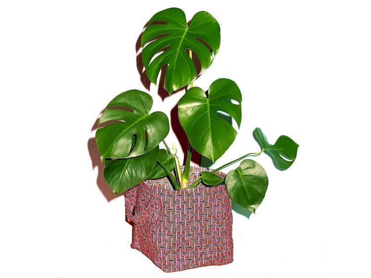 Yevu Pot Planter, $55