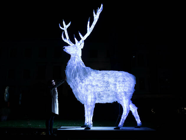 Check out this illuminated deer made from 2,000 plastic bottles