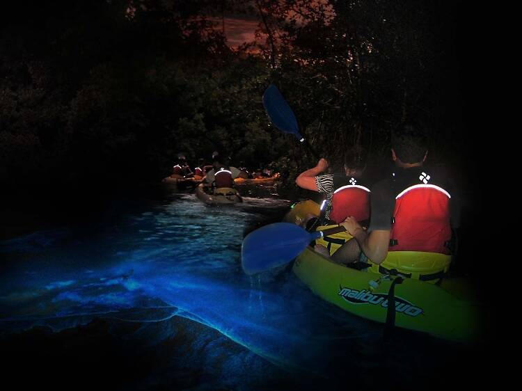 光る海を漕ぐ。