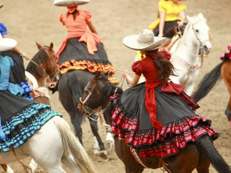 メキシコの国技を観る。