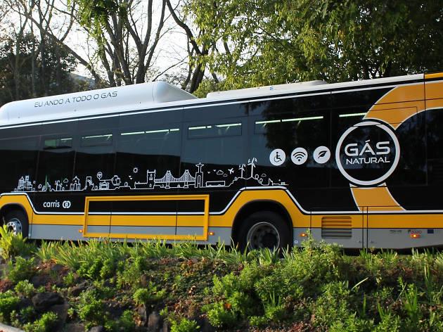 Carris já tem 15 autocarros ecológicos com Wi-Fi