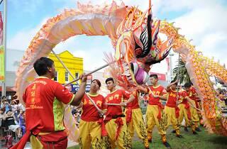 People dancing in dragon costume.