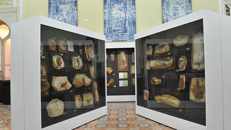 Museu da Dermatologia Portuguesa Dr. Sá Penella