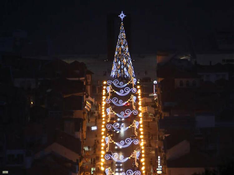 A Maior Árvore de Natal