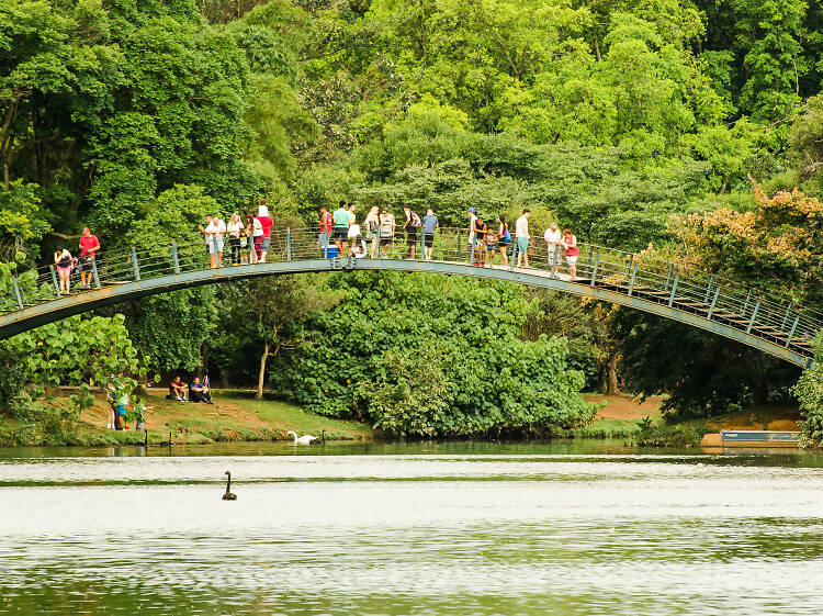 The 20 best things to do in São Paulo