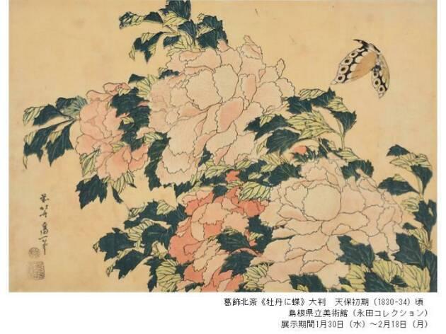 Hokusai Updated
