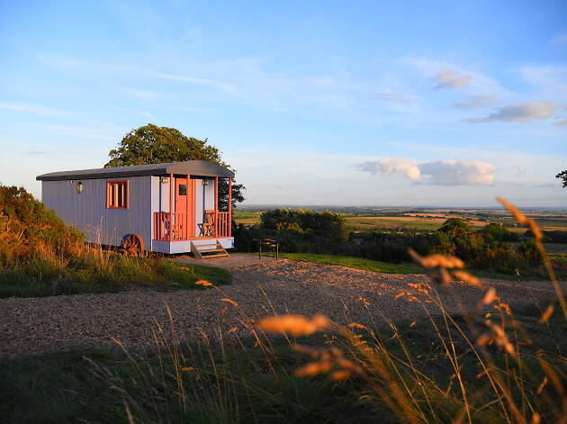 Bluegrass Shepherd's Hut, Northumberland