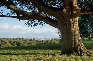 Hampstead Heath, pretty walks