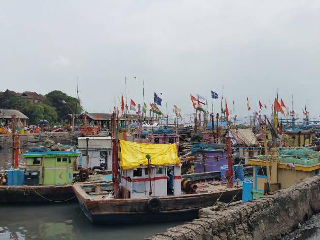 Sassoon Docks, Colaba