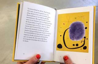 Llibres d'art