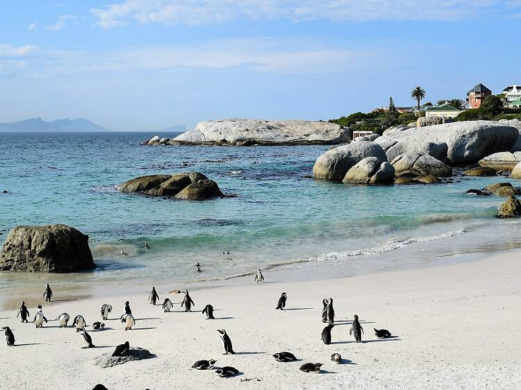 The 10 best Cape Town beaches