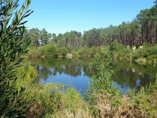 Cinco lagoas para visitar perto de Lisboa