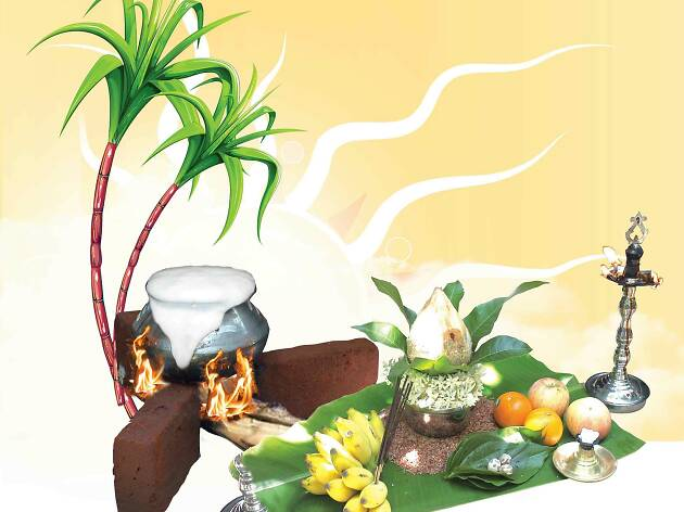 Thai Pongal 'The Festival of Harvest'