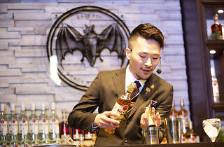 international cocktail event