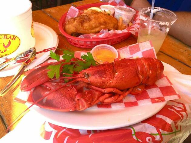 Boiled lobster at The Barking Crab